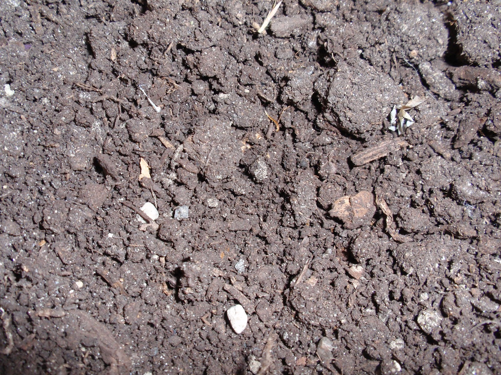 A gardening life march 2012 for Mushroom soil