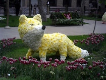 Fox is made of flowers