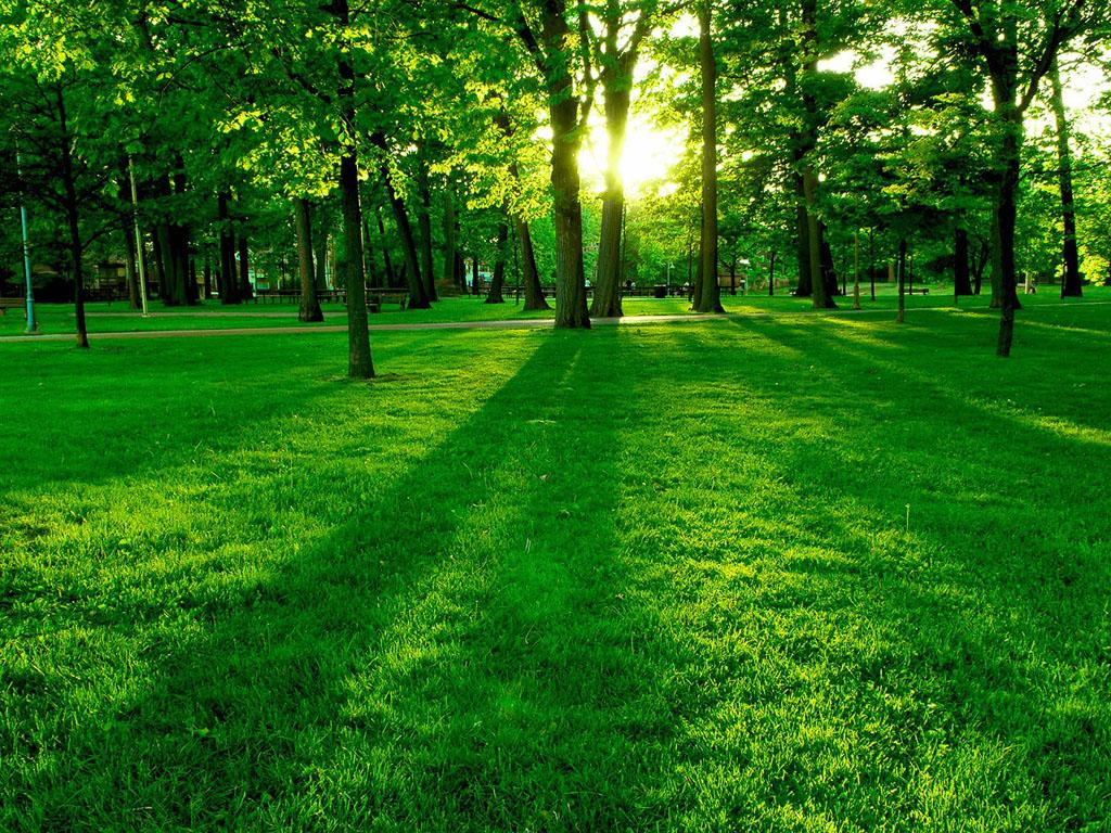 gambar gambar taman yang sangat indah duvar kagitlarin