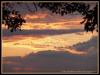 sunset June 16, 2011