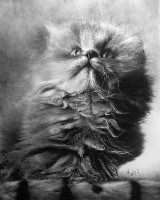Bila Gambar Bersuara Lukisan Kucing Yang Sangat Detail
