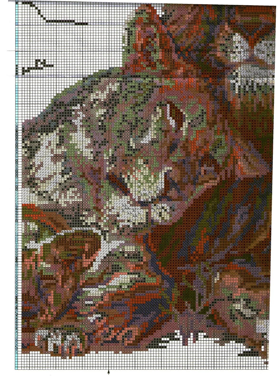 схема риолис гладиолусы в дмс