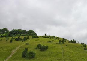 """""""Les larris"""", des coteaux qu'il faut escalader, en suivant les sentiers tracés par les moutons."""