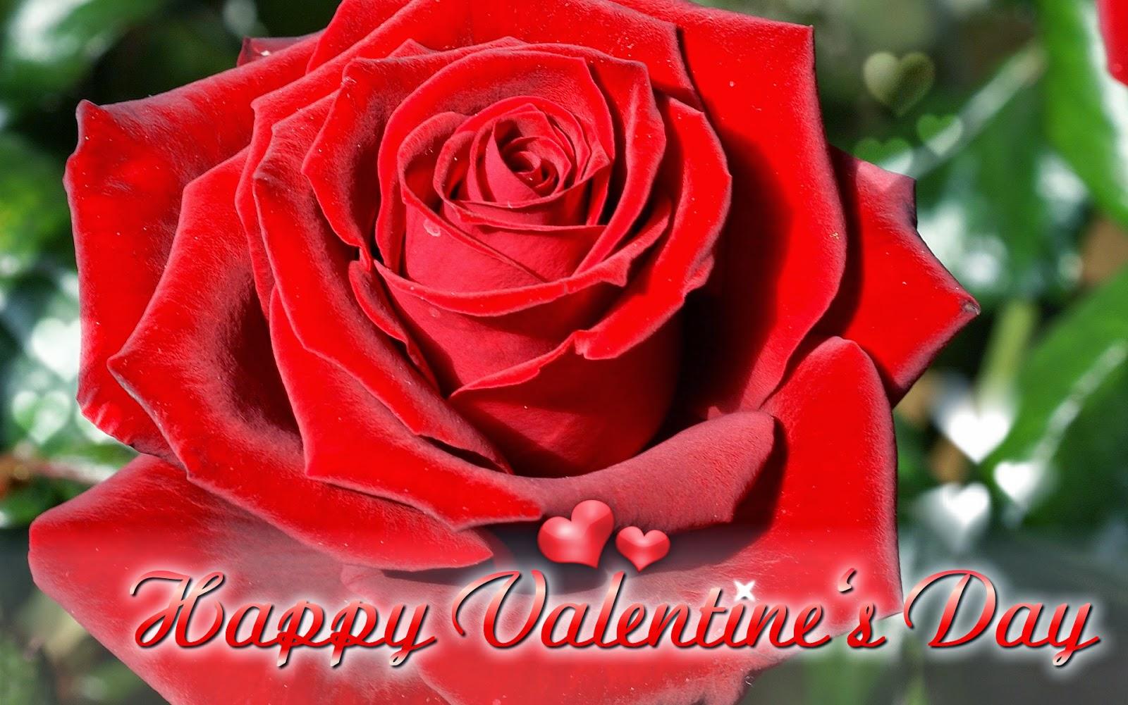 Beautiful Desktop Wallpaper's Valentine