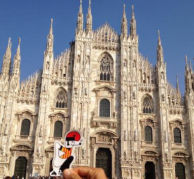 Un catganer al Duomo de Milà..