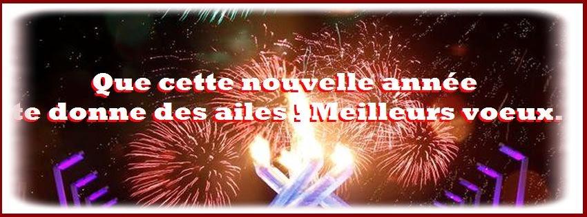 Bonne année 2015 - citation d'amitié