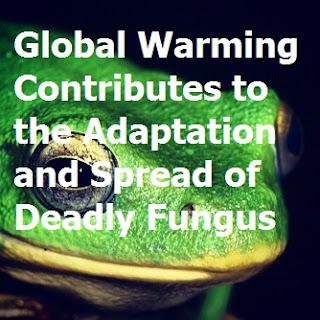 The residual effects of global warming are occurring on a much much much smaller scale