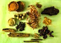 obat kencing nanah tradisional