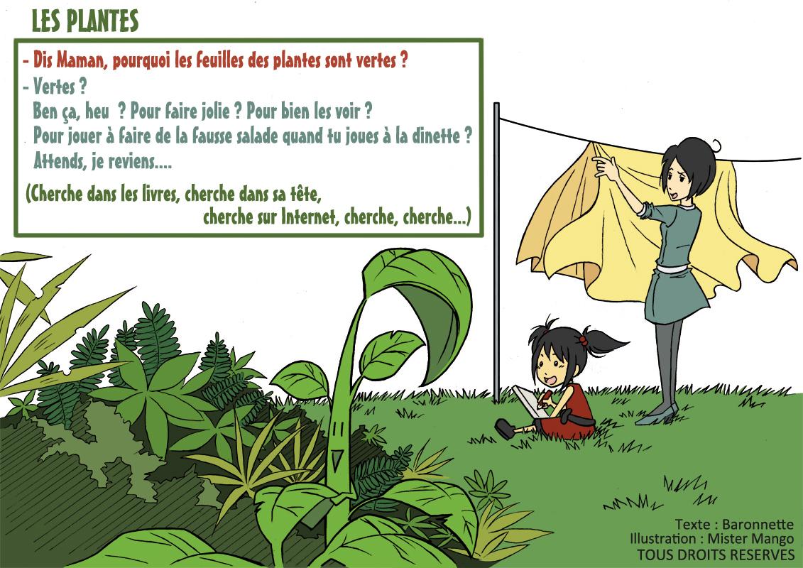 Mister mango histoire du vendredi by baronnette for Les plantes vertes