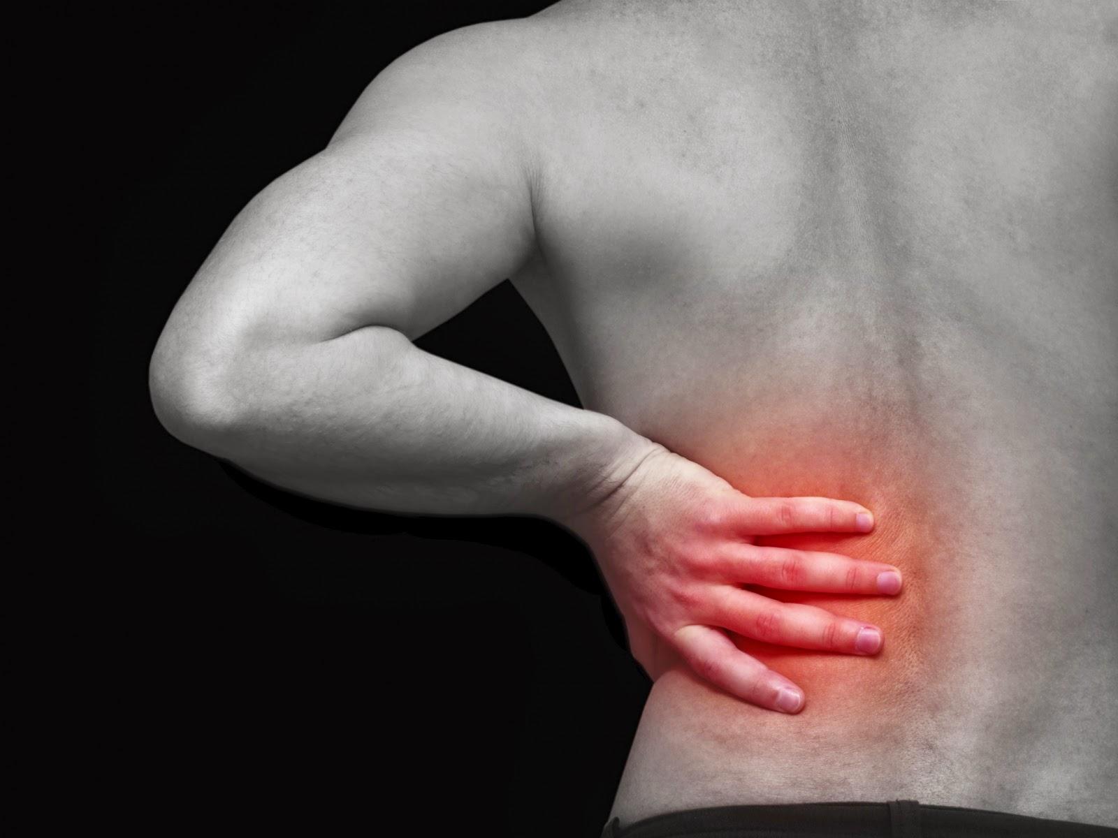 Las ocupaciones en fitbole a la osteocondrosis del vídeo