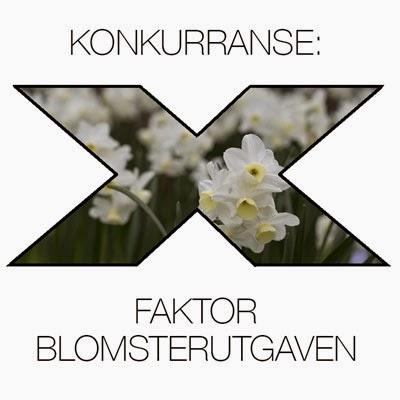 http://moseplassen.com/2015/03/hvit-blomst/#more-38412