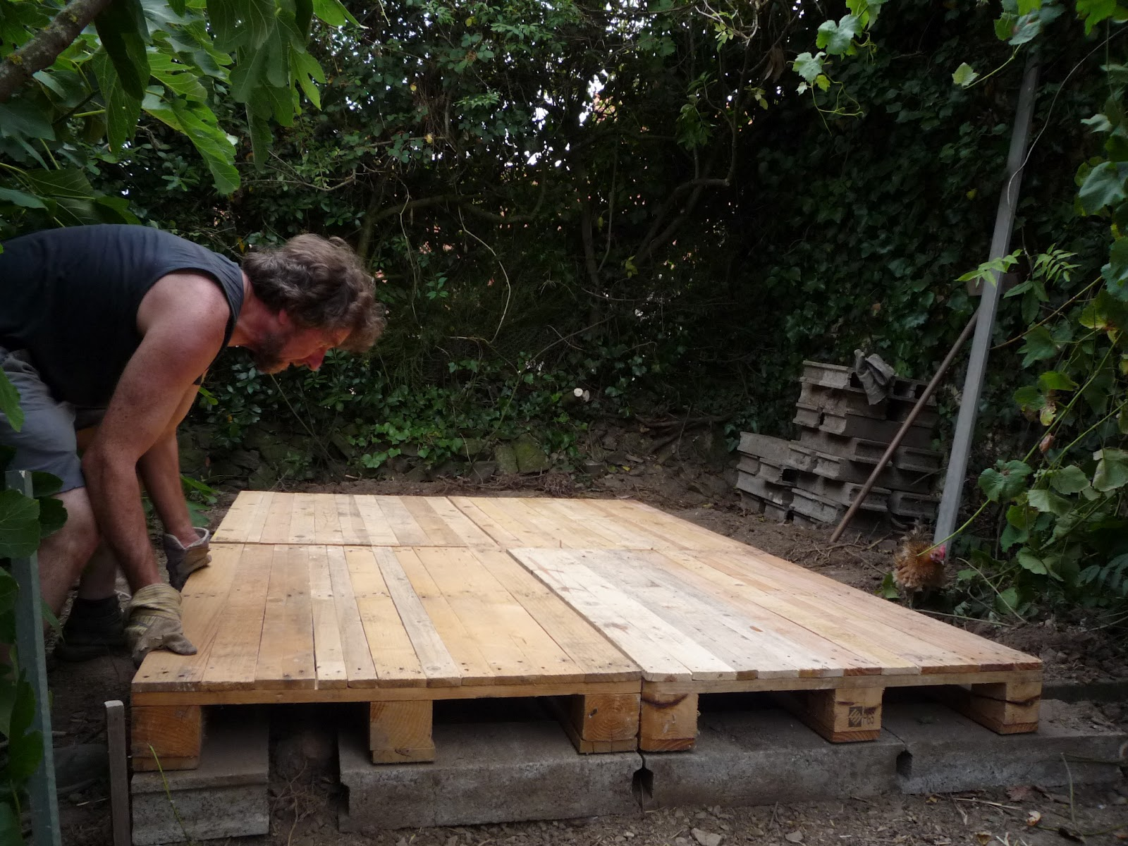 Assembling tips for pallet wood coop the green lever for How do you spell pallets