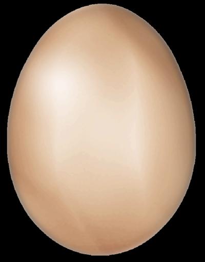 Poule 39 s club un oeuf de 110 g pondu par une poule for Oeuf de poule mou