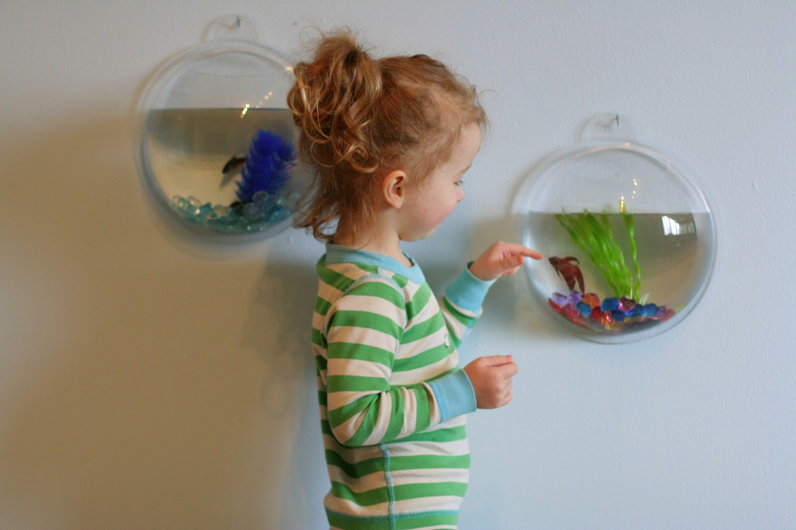 Fish tanks for kids rooms for Fish tanks for kids