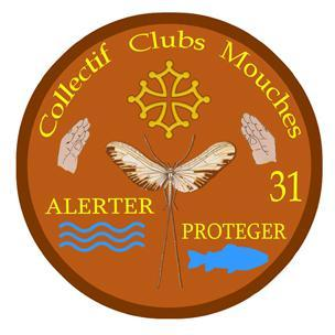 Collectif Clubs Mouches 31