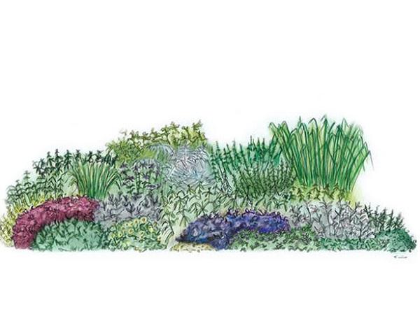 Un jard n de hierbas arom ticas guia de jardin - Jardin de aromaticas ...