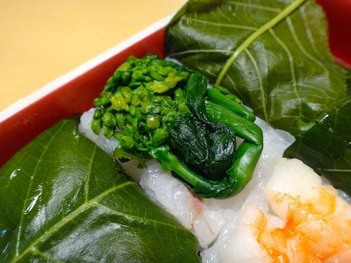 緑がとてもきれいな菜の花。金沢さくら寿司