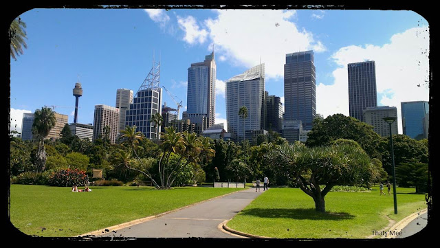 vue gratte-ciels CBD Sydney, business district Sydney visiter Australie tourisme