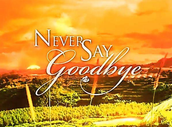 Never Say Goodbye April 3, 2013