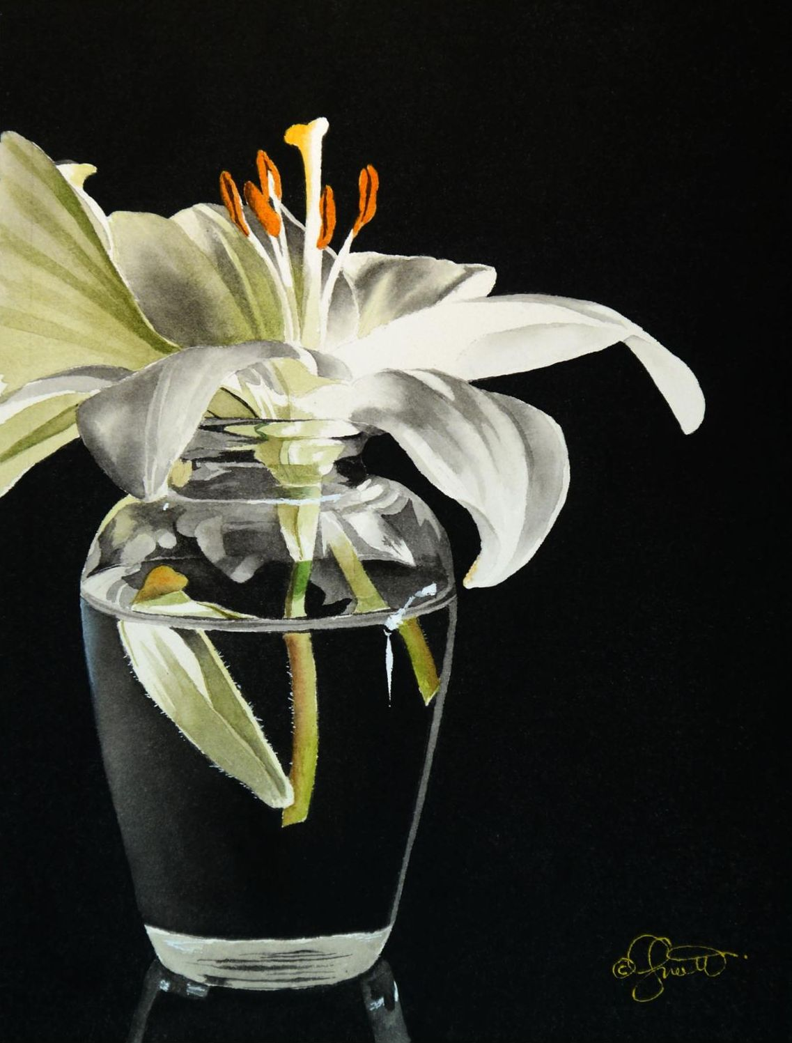 Contemporary realism white lily in vase new watercolor and video white lily in vase new watercolor and video on the forum reviewsmspy
