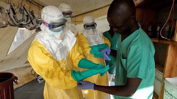 Virus Ebola: Gejala, Cara Menular, dan Pencegahan