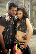 Pooja movie photos gallery-thumbnail-13