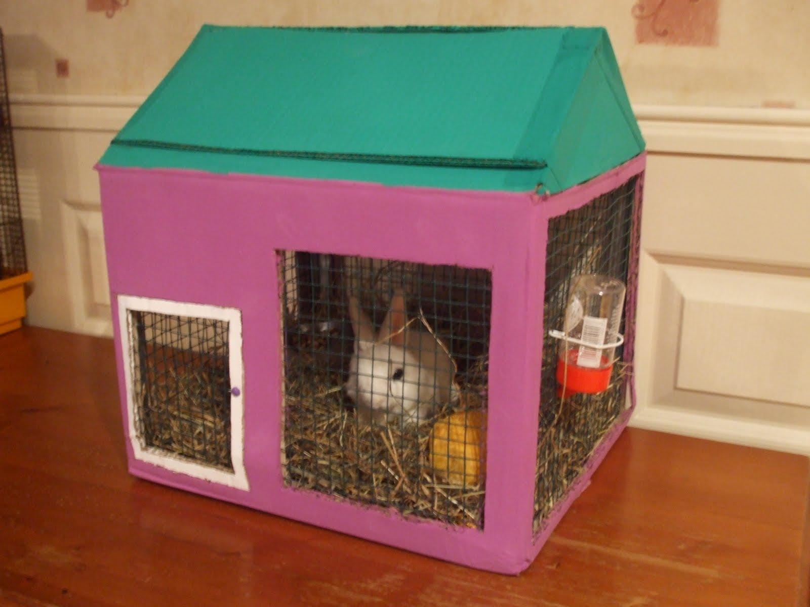 bodemplaat konijnenhok kopen
