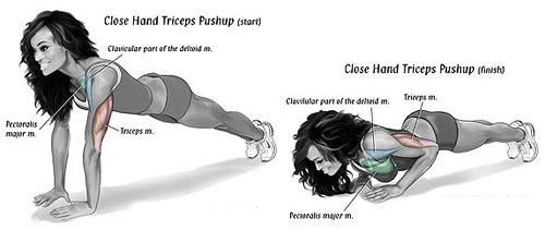 Top Four Tricep Workouts For Mass Bodydulding