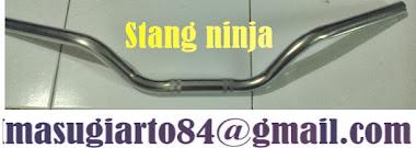 stang ninja