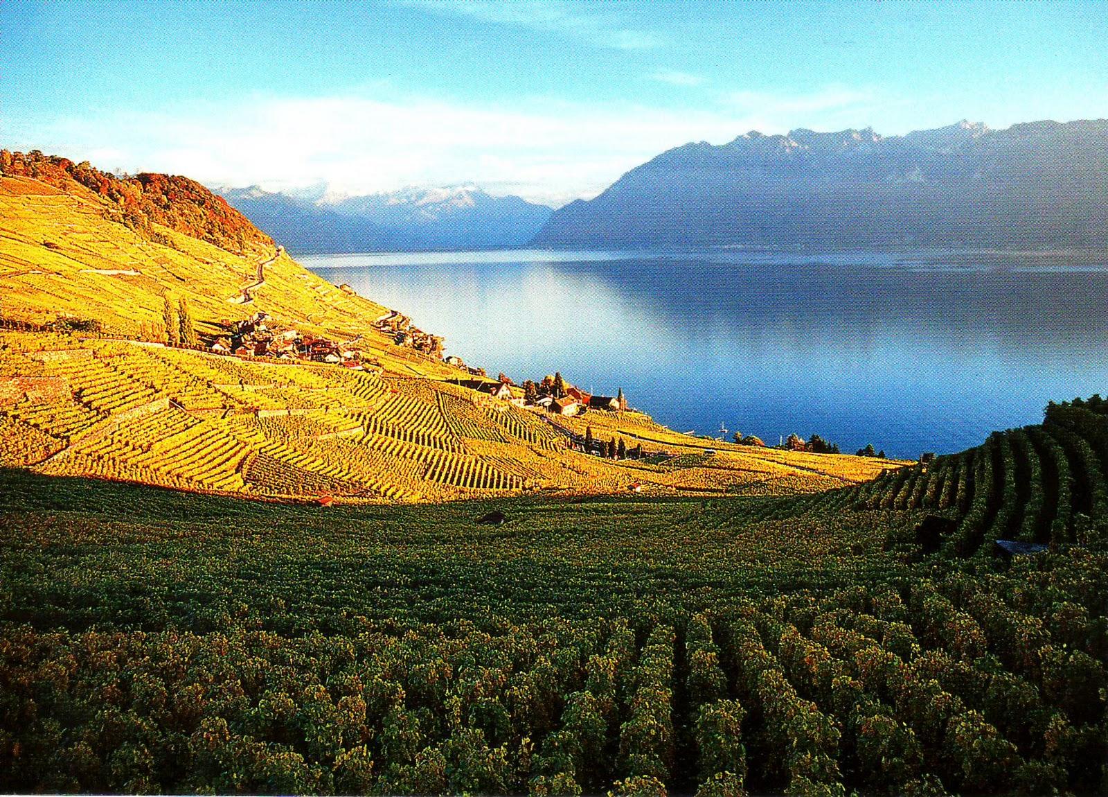 Présenter sa région/pays Switzerland+-+Lac+Leman+-+Zaza