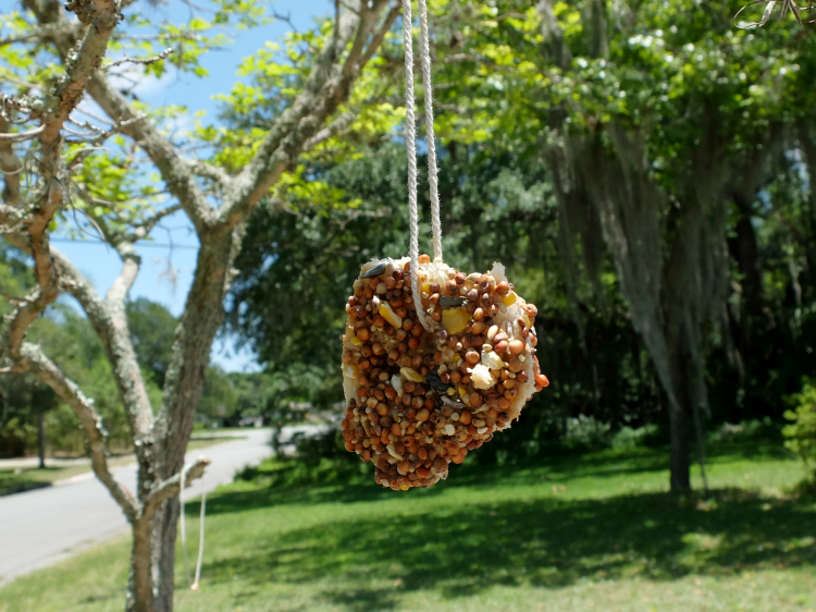 Simple Kid Friendly Bread and Peanut Butter Bird Seed Feeder