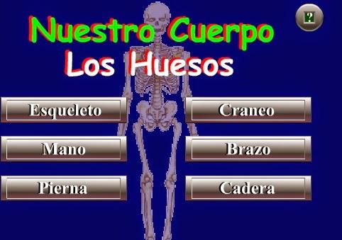 http://www.juntadeandalucia.es/averroes/recursos_informaticos/andared02/los_huesos/index.html