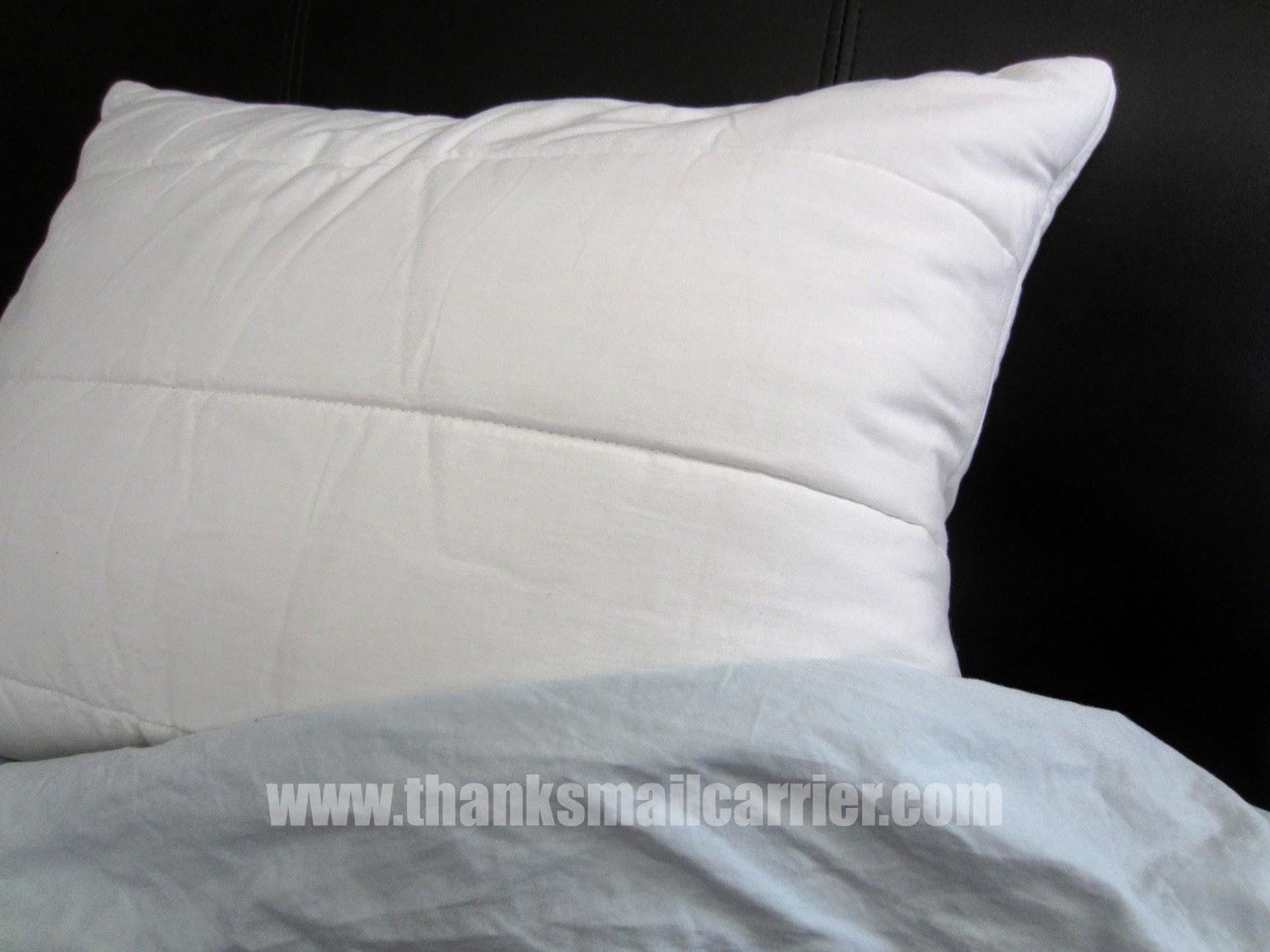 Reverie Sweet Slumber Pillow review
