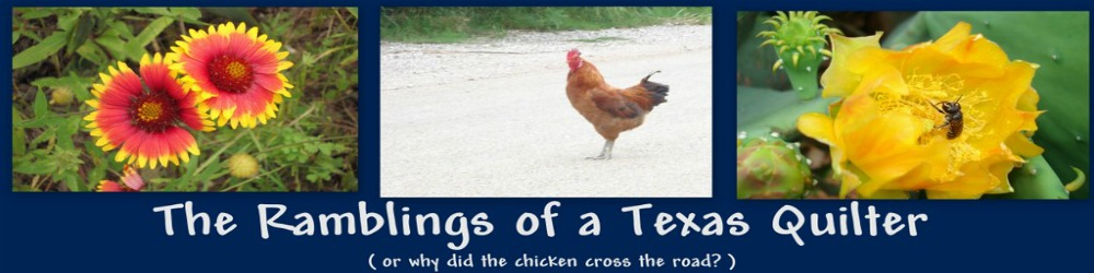 The Ramblings of a Texas Quilter