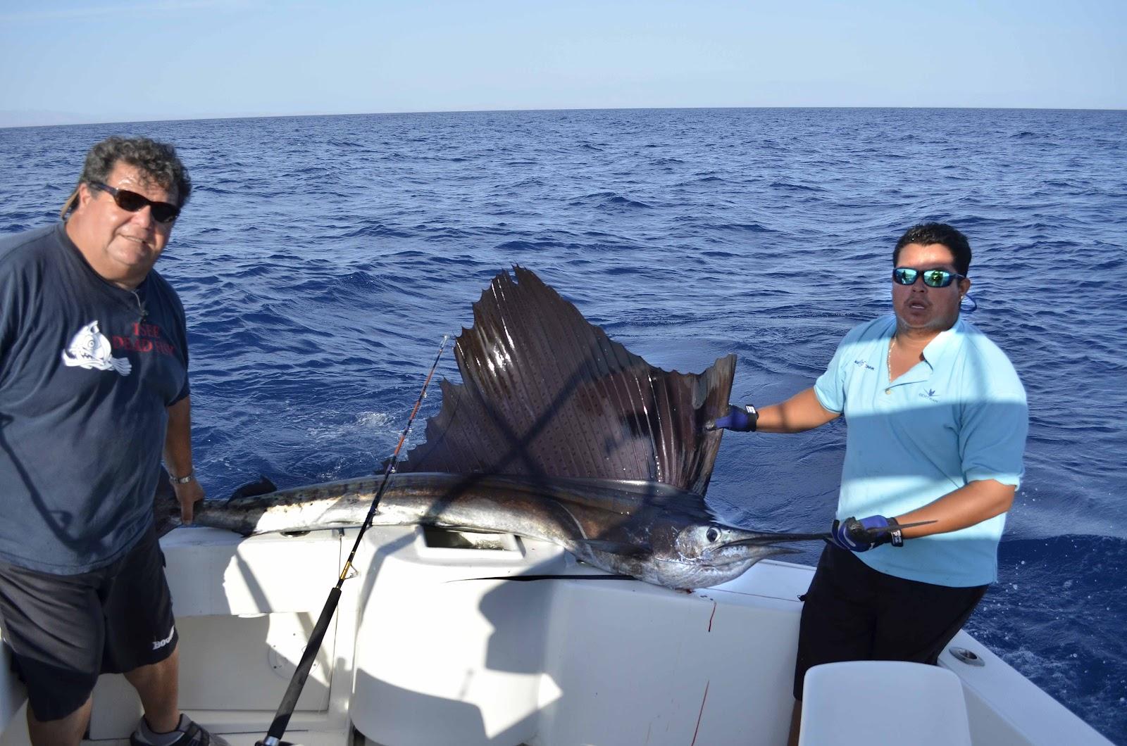 Dan 39 S Journal East Cape Fishing Report