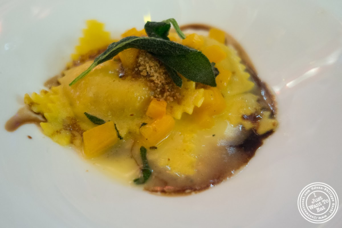 image of Pumpkin cappellacci at Circo in NYC, New York