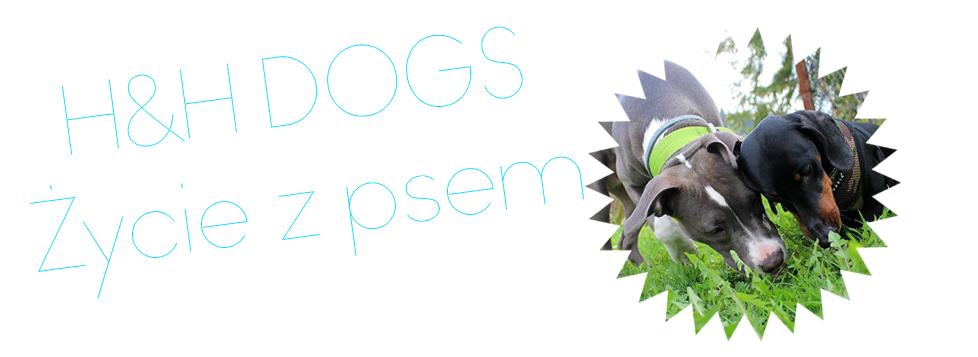 H&H D O G S - czyli życie z psem !
