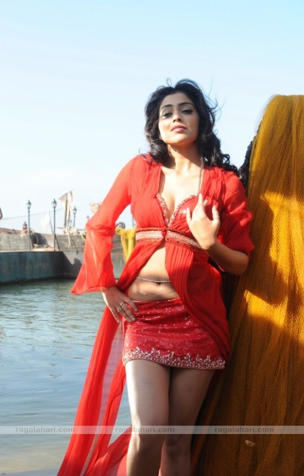 SHRIYA SARAN Hot Pose With Her Lovely Looks hot photos