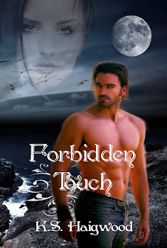 Forbidden Touch by K. S. Haigwood