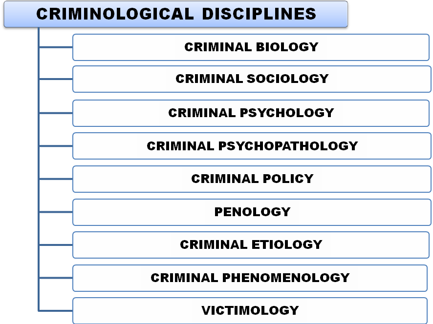 criminology terms Courses in the criminology program integrate theory and application into a  by  continuing to use ulv sites, you are accepting the terms of use defined in this.