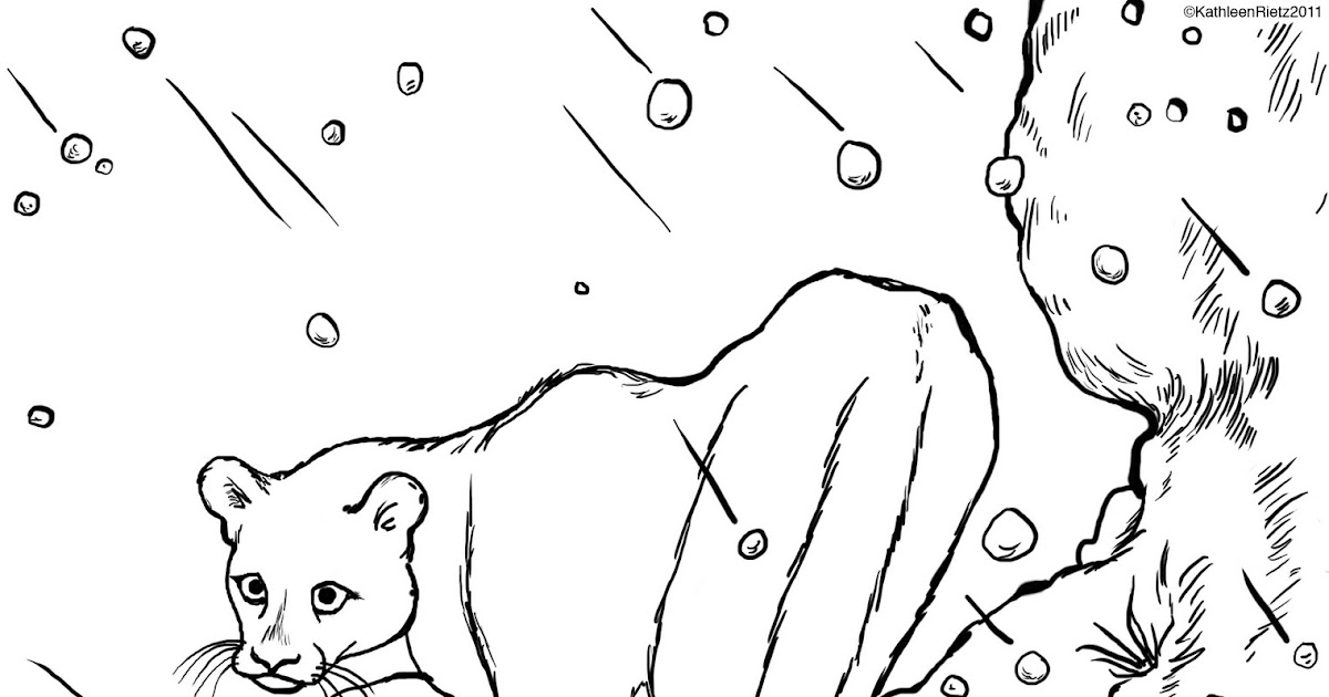 Wsu cougar coloring page coloring pages for Cougar coloring pages