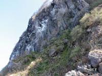 ウミウの営巣地 集塊岩層の上に溶岩