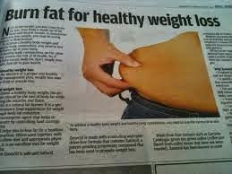 6 makanan bakar lemak