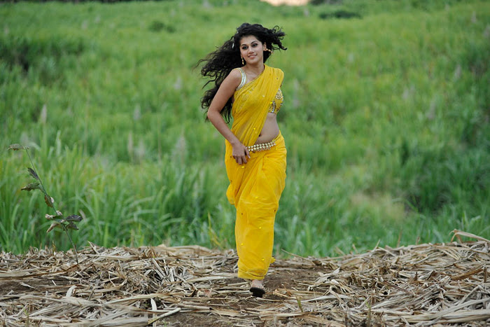 Mogudu Movie Actress Tapsee Spicy Navel Show Photos Photoshoot images