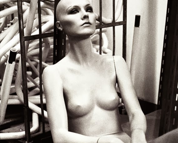 nuncalosabre.Mannequin Photography and Collage - Eleanor