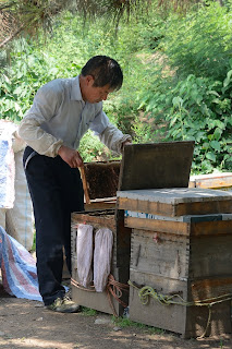 Bee keeper and hives at the Fahaisi street market in Beijing