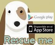 APP para adoptar animales