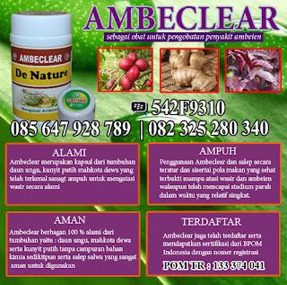 obat herbal ambeien dalam