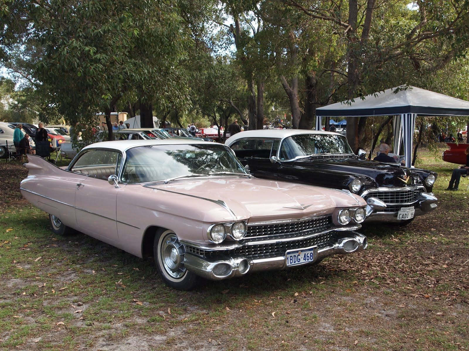 Whiteman Park Vintage Car Show