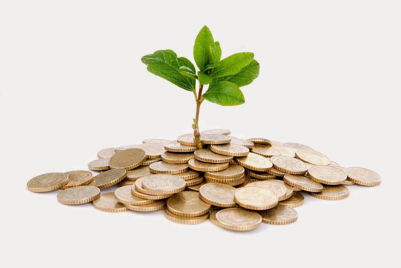 Iniciarse en el mundo de los negocios y las inversiones